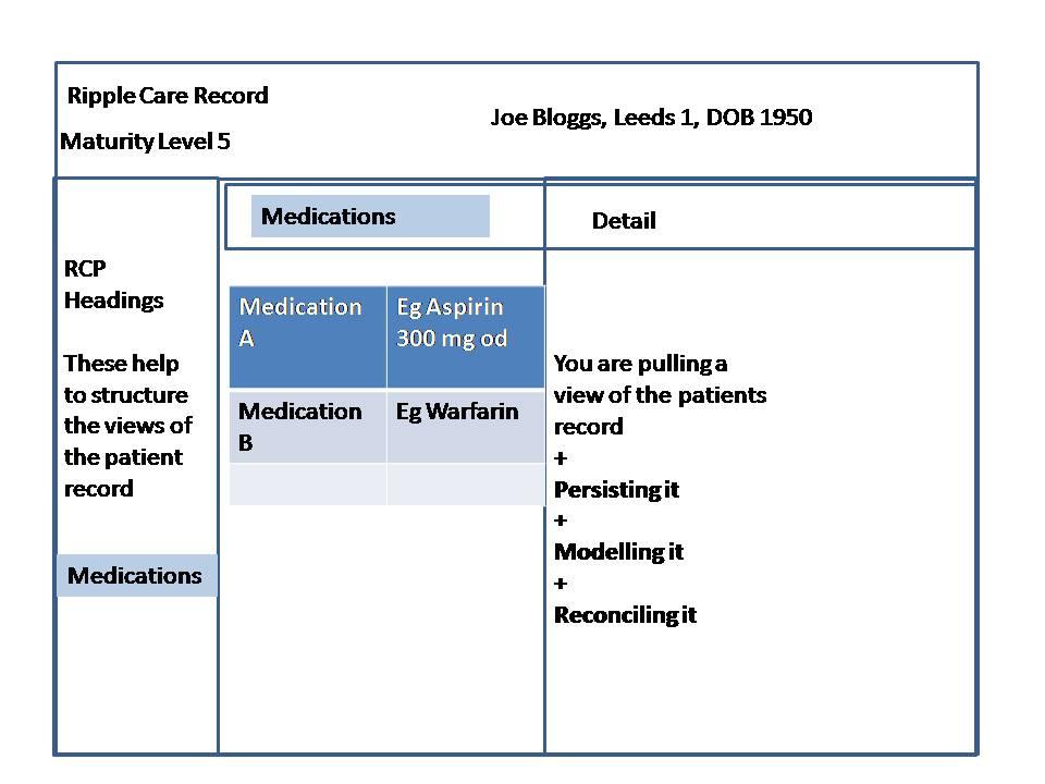 Maturity Model Level 5